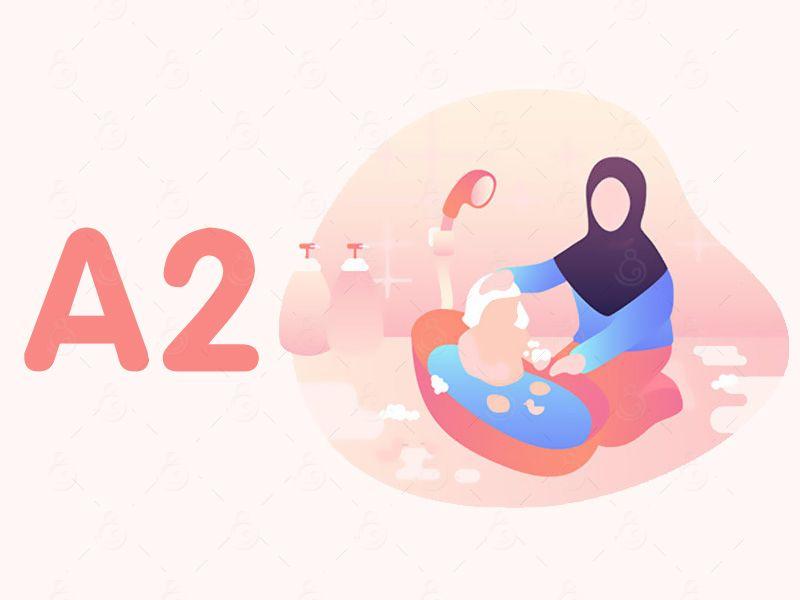 A2-臻选育婴师